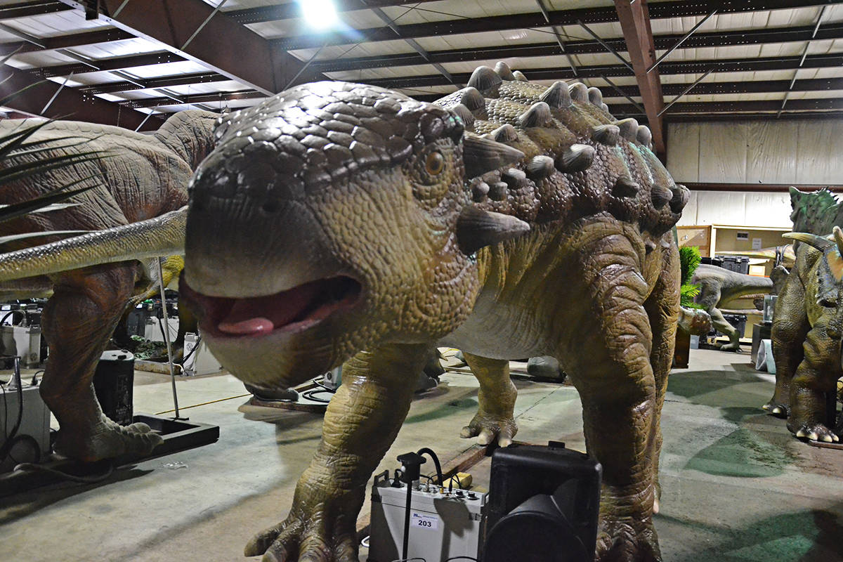 T-Rex earns big bids at B.C. dino auction