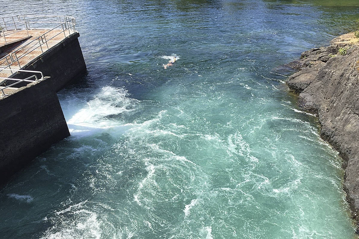A swimmer swims in an unauthorized area at Comox Dam. Photo courtesy BC Hydro